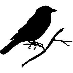 Ravensden CE Primary Academy logo